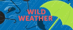 image of wild weather text (umbrella, rain, wind)